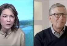 Bill Gates - Don't copy Elon Musk re Bitcoin