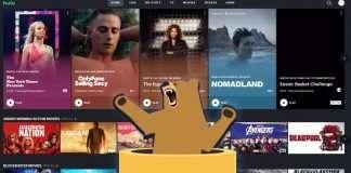 Tunnelbear not working with Hulu 1